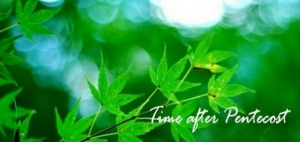 Time after pentecost